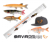 Savage Gear Pro Pack (6-delig)